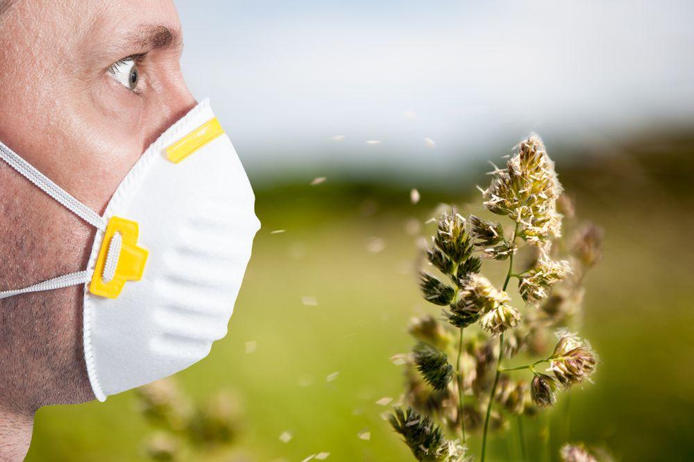 megoldas_allergiara2