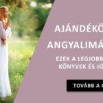 angyal-cikk-cover