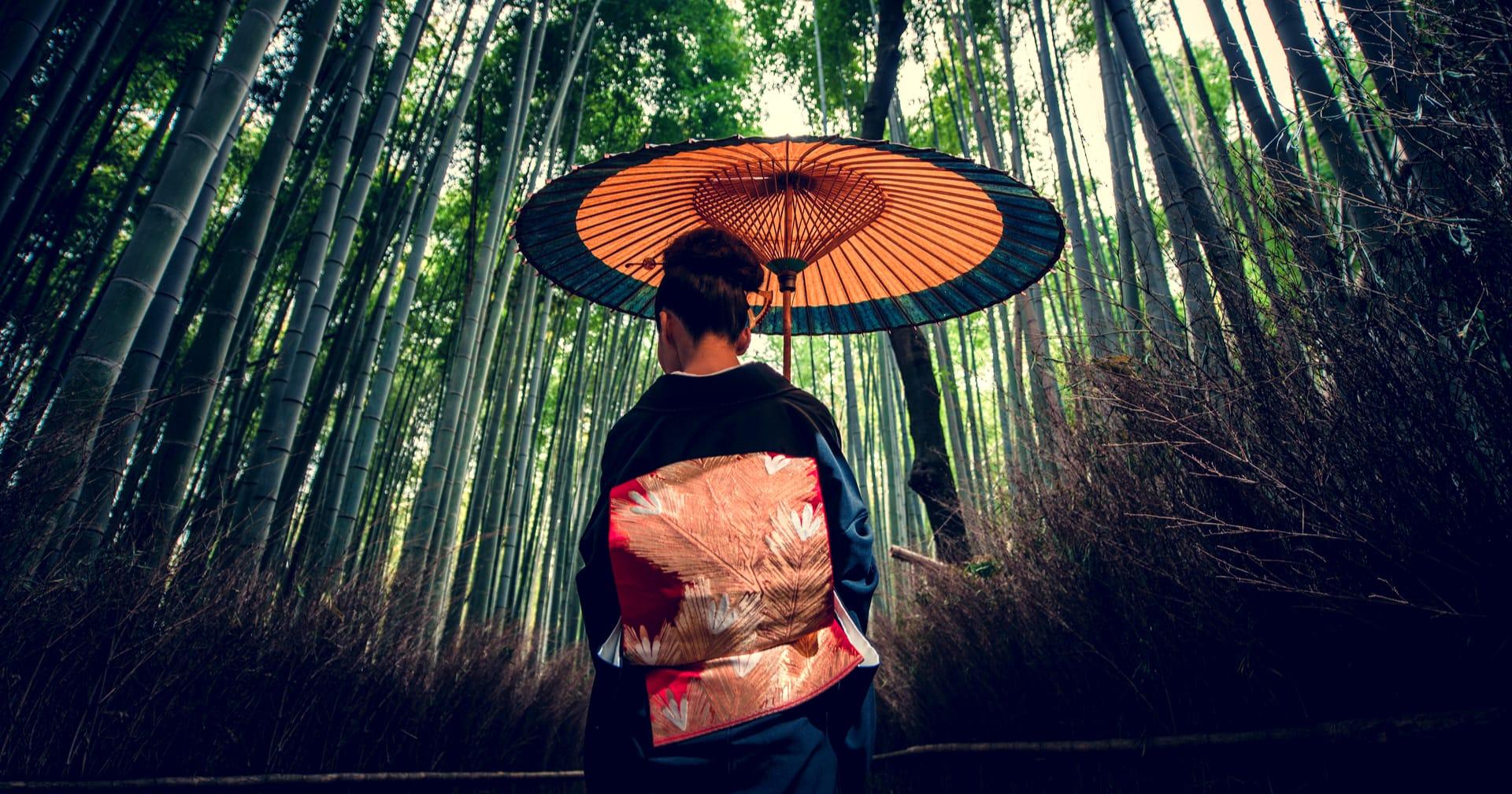 séta erdő