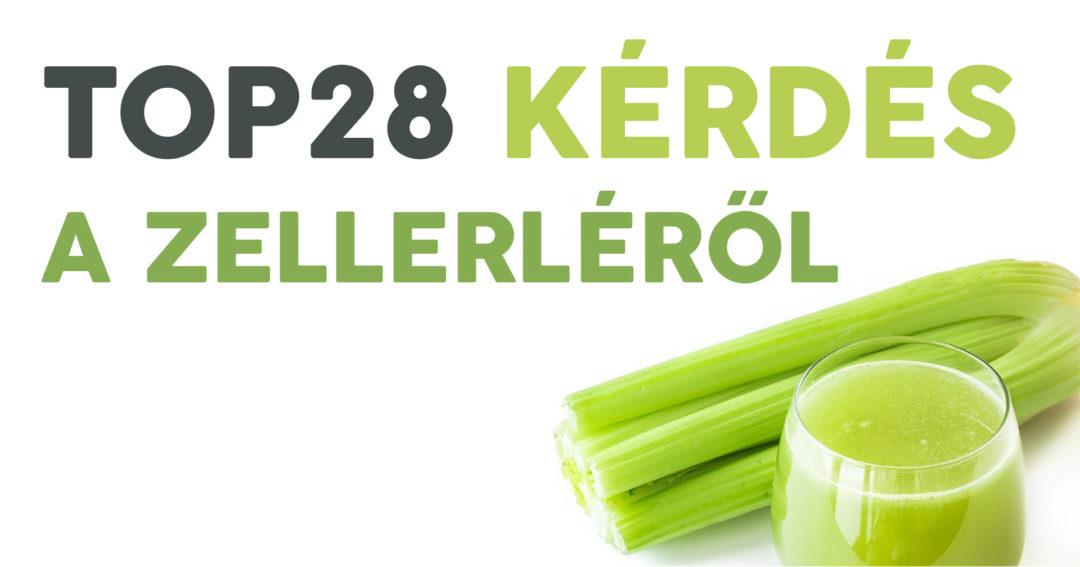 top28-kerdes-a-zellerlerol