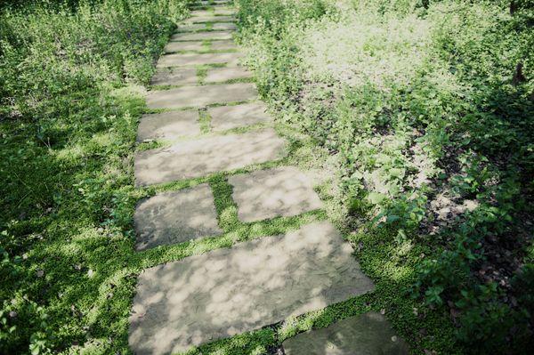 32. oldal: Kövezett ösvény Oprah birtokán