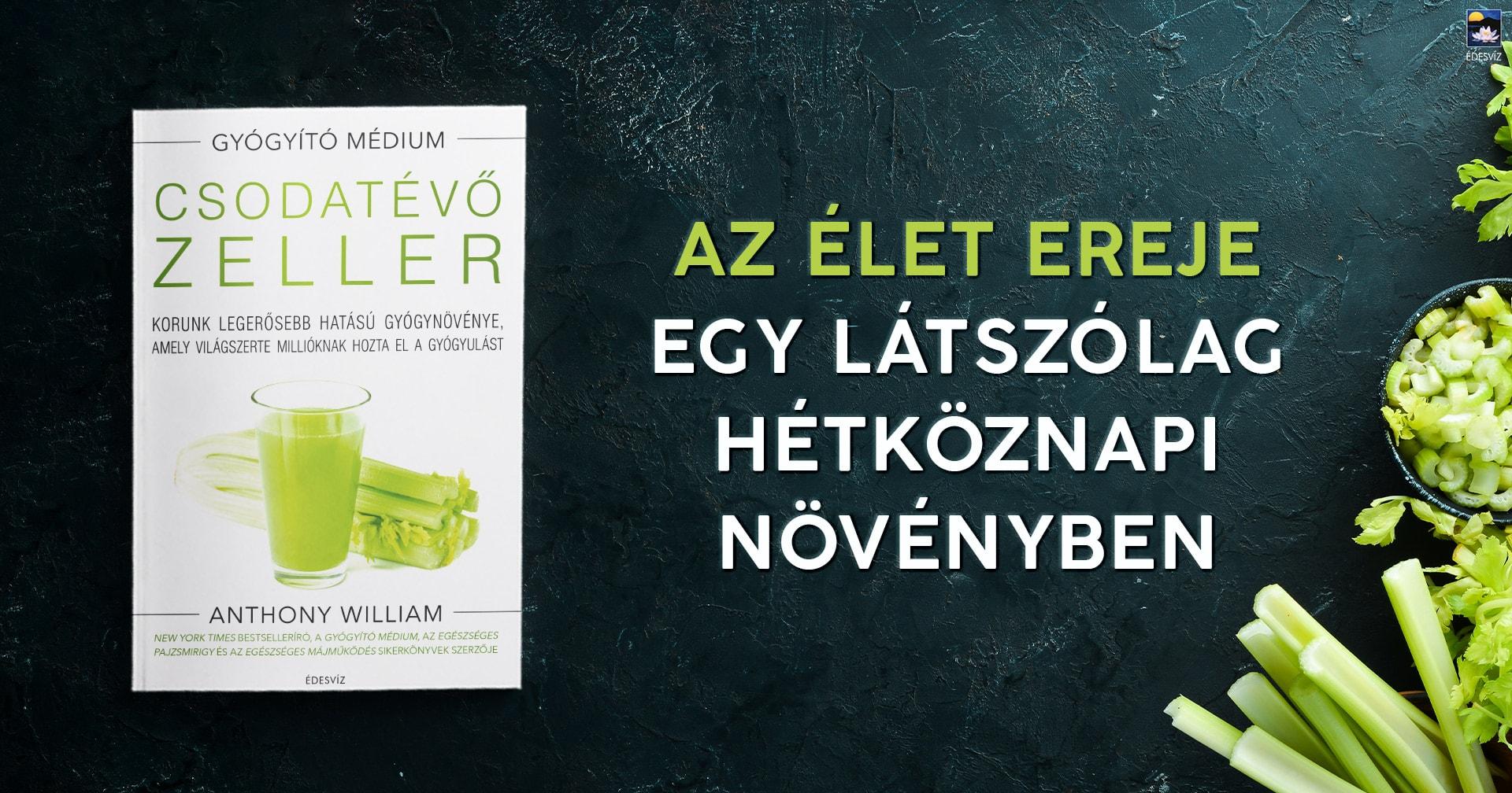 zeller-cikk-banner