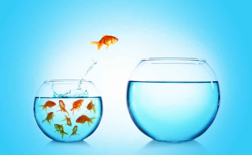 A változás 5 tantétele – hozd ki a legjobbat önmagadból
