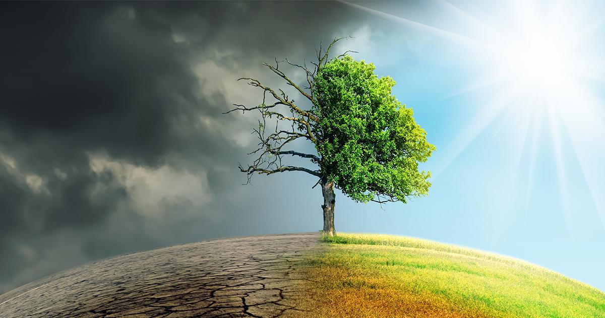 Megoldások a klímaváltozásra másképp