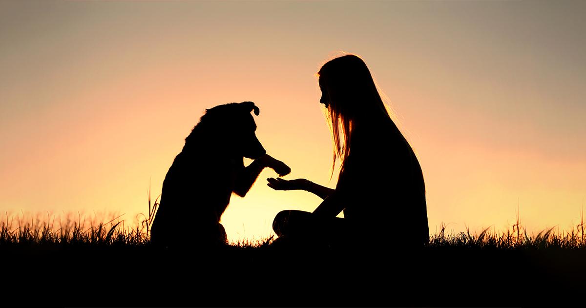 Gyógyító szertartások, amikkel megemlékezhetünk elvesztett állatunkról