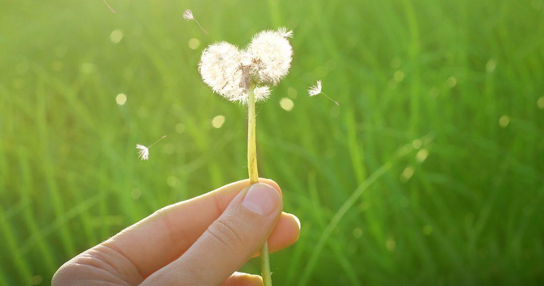 10 kulcsfontosságú lecke a Visszatérés a szeretethez című könyvből