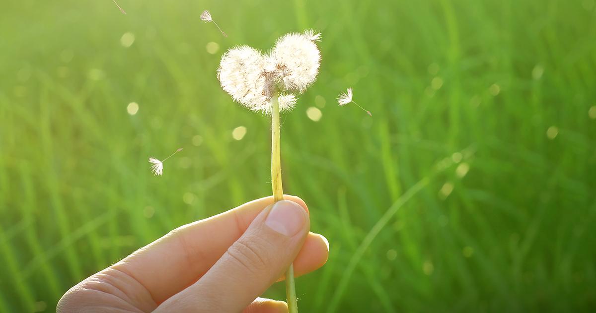 10 kulcsfontosságú lecke a <i>Visszatérés a szeretethez</i> című könyvből