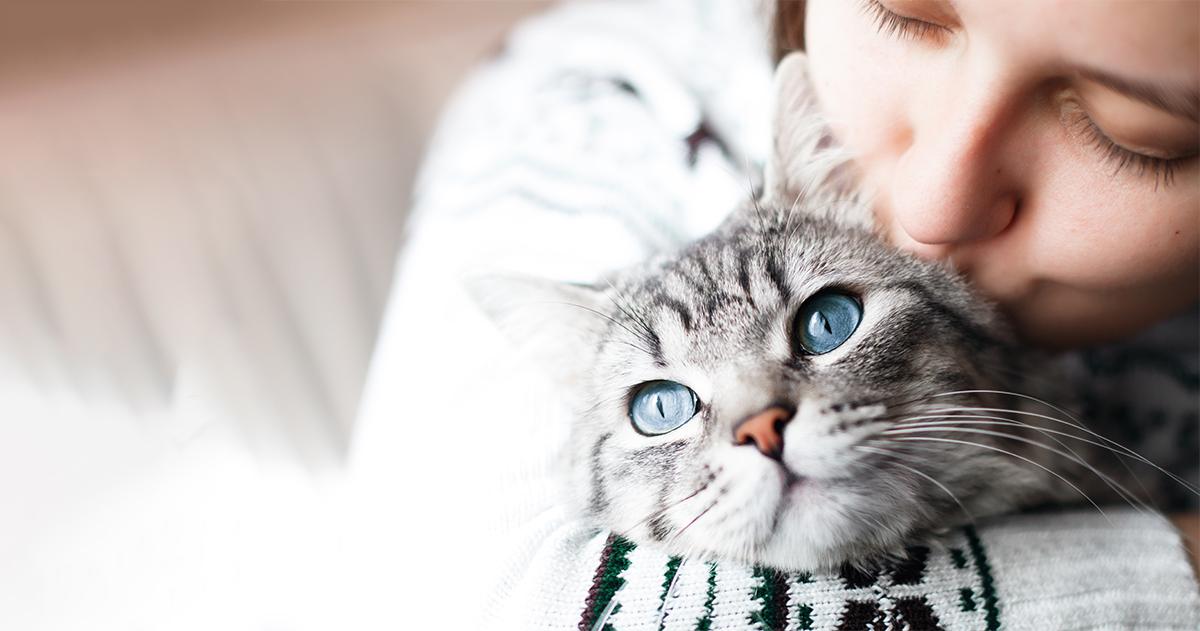 Az állatok meggyászolásának pszichológiája